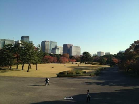 imperial garden (2)